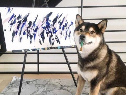 Perro gana más de 17 mil dólares vendiendo sus pinturas