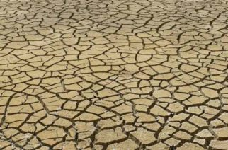 Elimina Gobierno Federal seguro de daños catastróficos para el campo