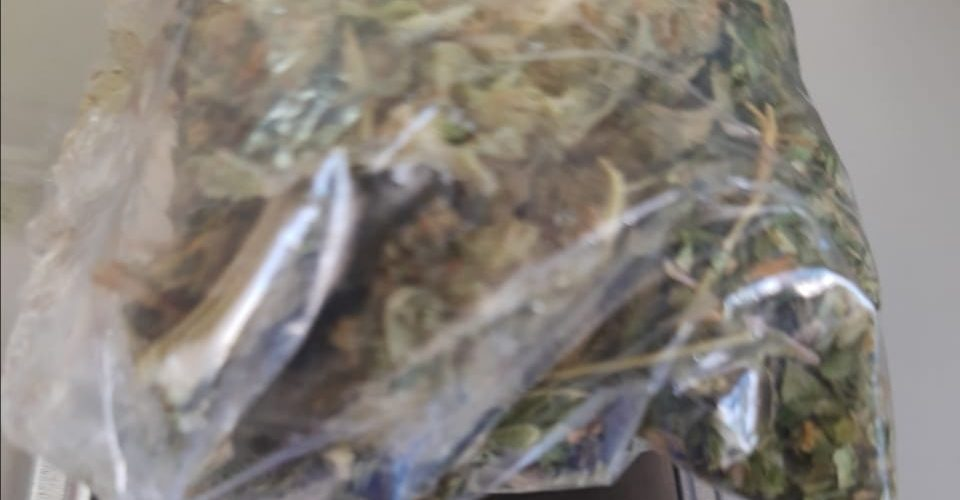 Caen 3 distribuidores de droga en Aguascalientes