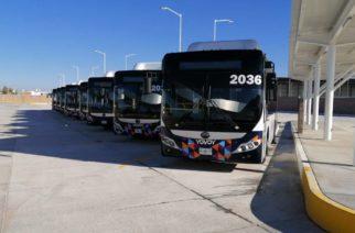 Pandemia frenó renovación de unidades de transporte público en Aguascalientes
