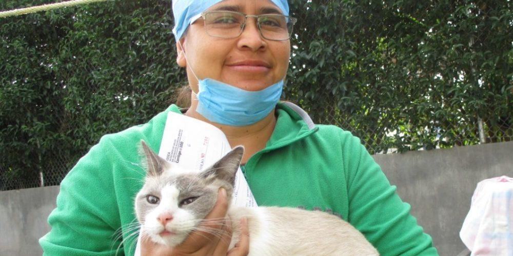 Inaugura Pabellón de Arteaga primer hospital veterinario público en la entidad