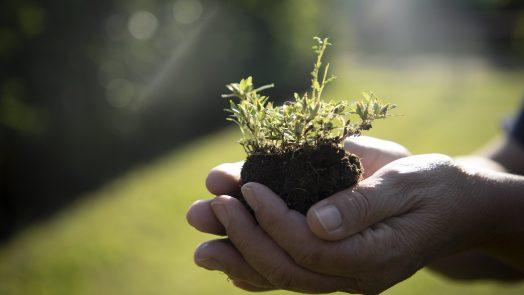 Municipio de Aguascalientes pone en marcha programa de administración sustentable