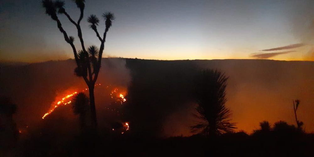 Participa helicóptero de la policía estatal en control de incendio en el cerro Mesa de Pinos