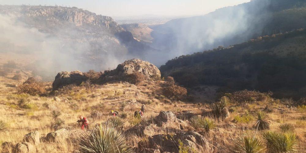 Logran sofocar incendio que consumió 70 hectáreas del cerro Mesa de Pinos