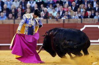Dice el Verde que están a punto de eliminarse las corridas de toros en Aguascalientes