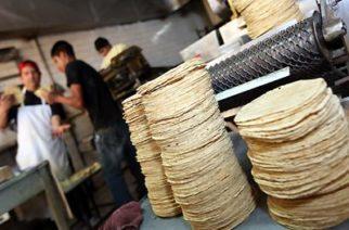 Crisis económica desploma ventas en tortillerías en 30%