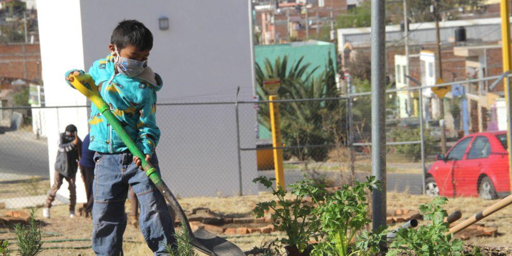 Replantan árboles frutales y hortalizas en el huerto familiar de la Línea Verde