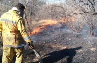 A la alza incendios forestales; van 10 en Aguascalientes