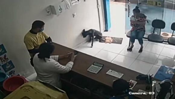 """(VIDEO) Perro callejero entra a veterinaria para que curen su """"patita herida"""""""