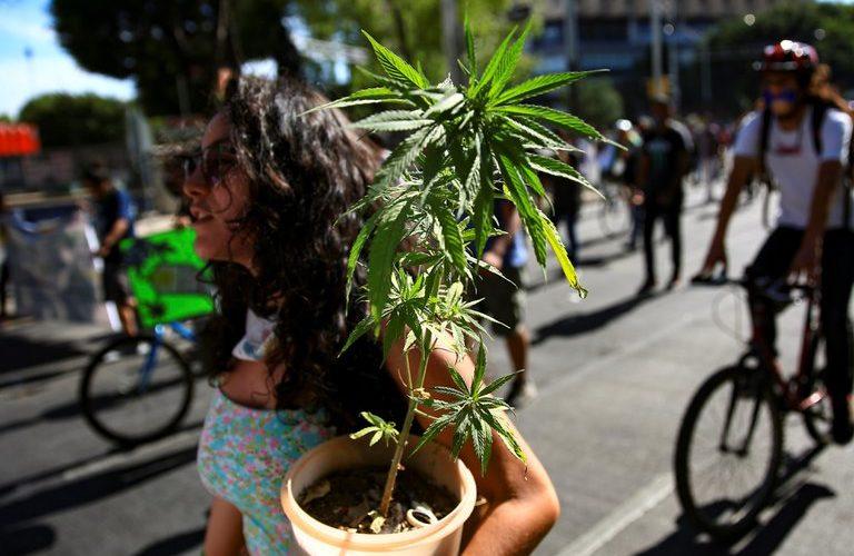La Cámara de diputados legalizó el uso lúdico de la marihuana