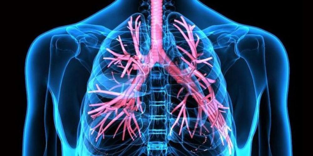 Ingesta de vitaminas A, E y D reduce problemas respiratorios, sugiere estudio
