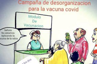 Campaña desorganizada de vacunación