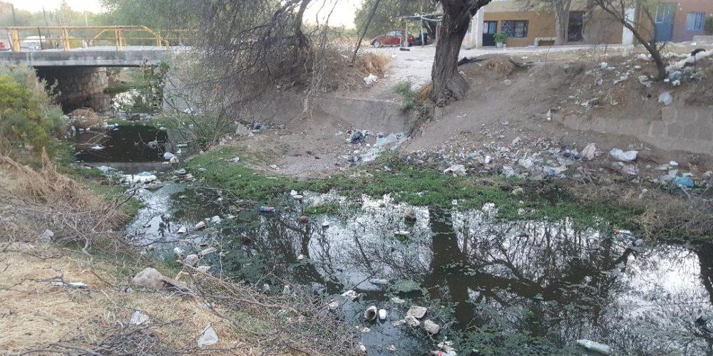 Denuncian contaminación en el arroyo de Norias de Ojocaliente