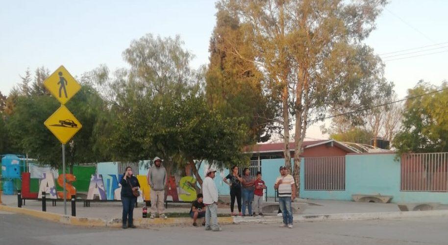 Enjambre de abejas ataca en Aguascalientes ; hay 6 lesionados