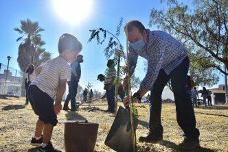 Municipio realiza plantación de árboles al norte de la ciudad