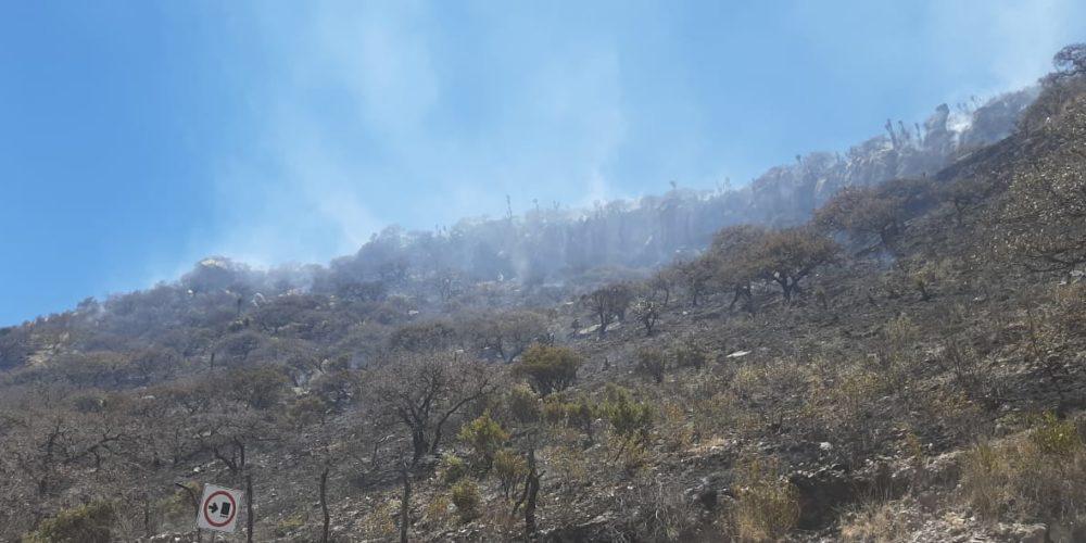 Sofocan incendio forestal en La Congoja