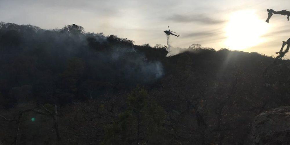 40 hectáreas de bosque consume incendio en la Sierra Fría