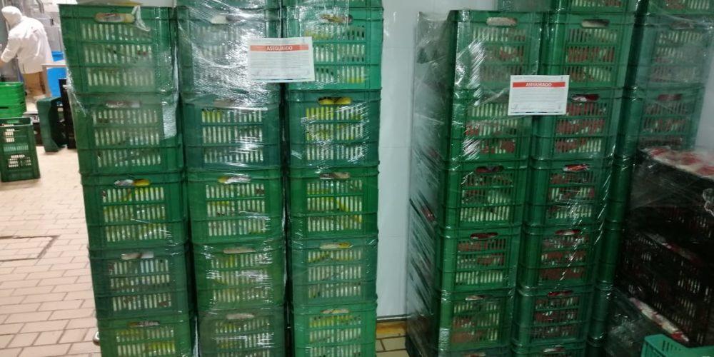 Decomisan 530 kilos de queso contaminado en Pabellón de Arteaga