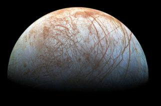 """Científica espacial asegura que """"pulpos"""" habitan una luna de Júpiter"""