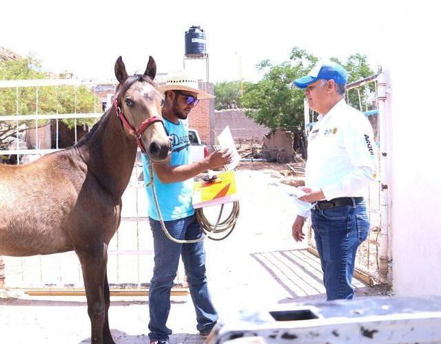 Por un México que retome el rumbo: Noel Mata