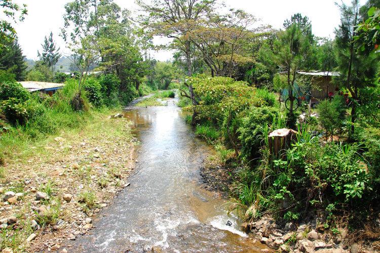 Gobiernos no toman en cuenta opinión de especialistas del tema hídrico: Biólogos