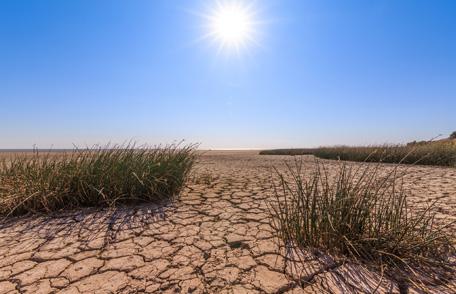 Alerta Conagua por sequía extrema en municipios del interior