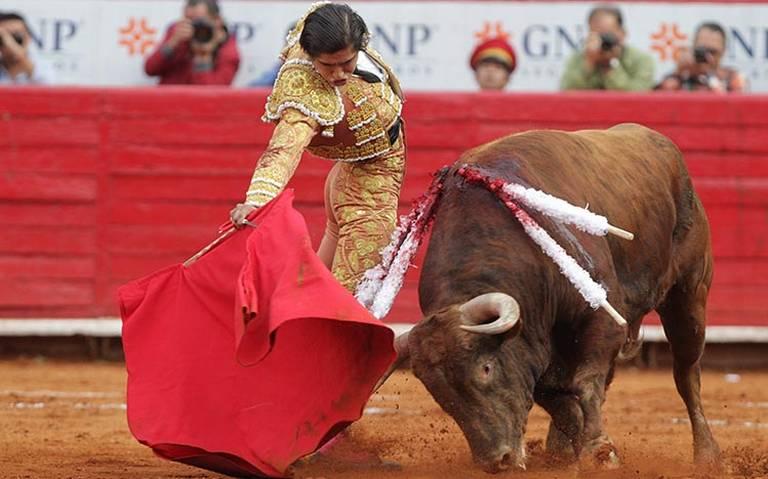 Falta de disposición de Jucopo aplaza tema para prohibir corridas de toros: Verde