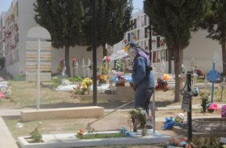 Atoradas solicitudes de lotes en renta de panteones municipales de Aguascalientes
