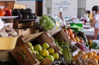 Municipio promueve el consumo en el mercado Valentín Gómez Farías