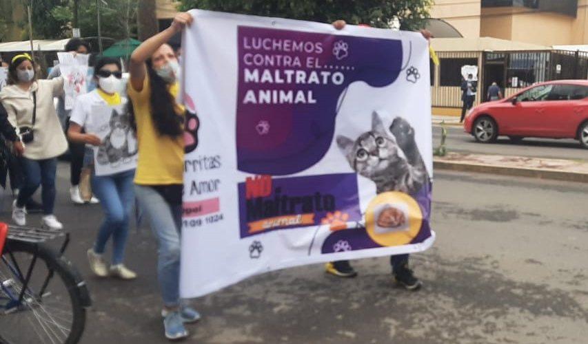 (Video) Se manifiestan contra la crueldad animal en Aguascalientes