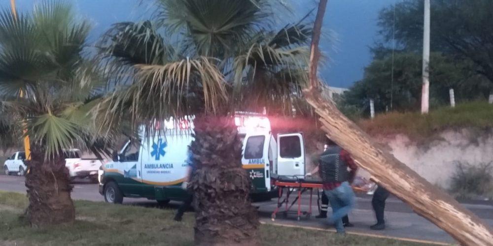 Muere conductor al impactarse contra un árbol en Calvillo