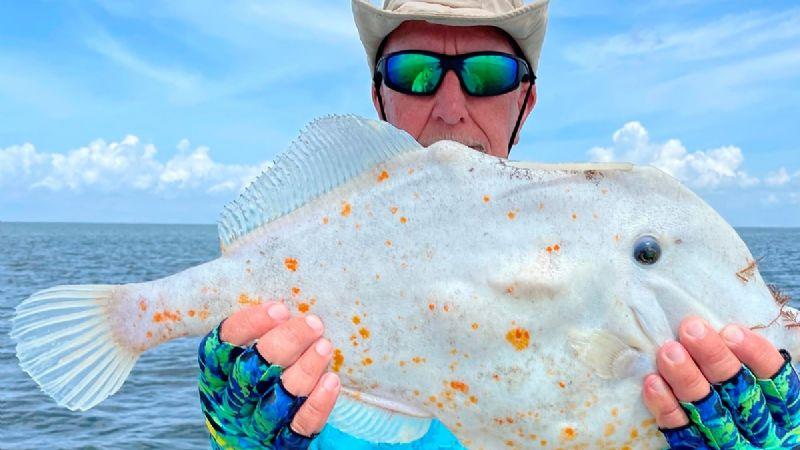 """Pescador encuentra un """"pez tortilla"""" en Florida"""